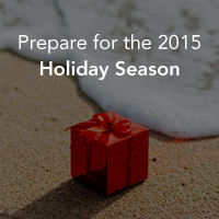 2015-holiday-season-fi